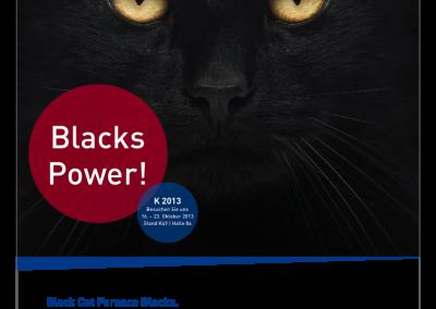 Kooperation BlackCat